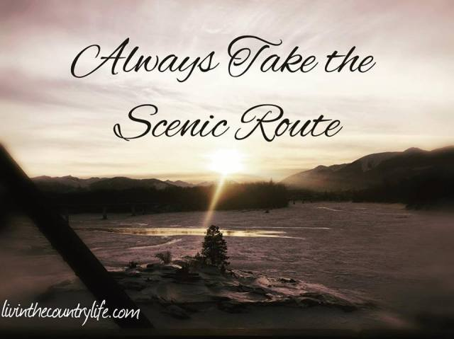 Scenic Route.jpg