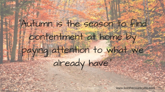 """Autumn is the season to find contentment at home by paying attention to what we already have."""